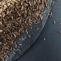 Кмин насіння — фото