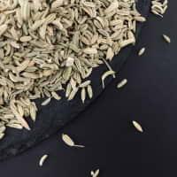 Фенхель насіння  — фото